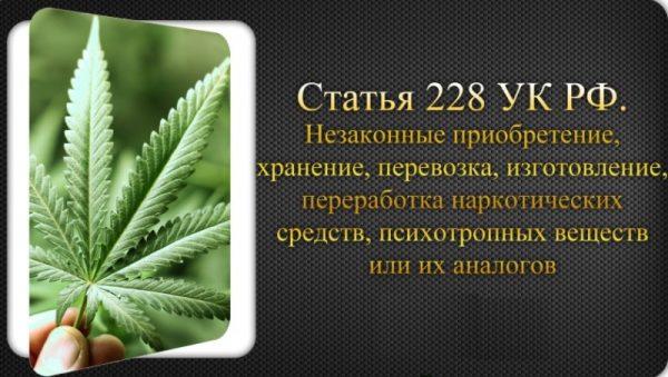 228 статья