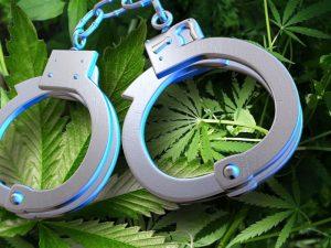 Срок за наркобизнес за хранение и распространение